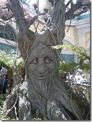 Garden_tree