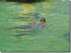 swimwstingray